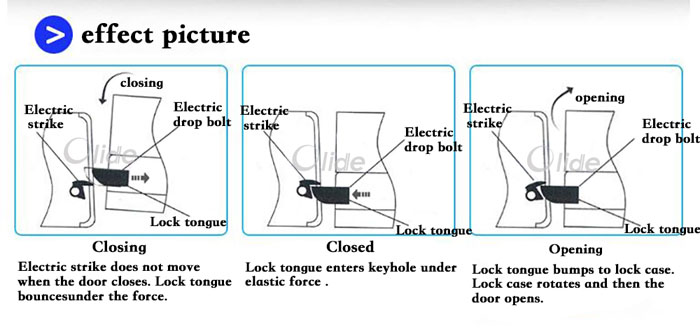 Stainless Steel Dc12v Electric Strike Door Lock For Access